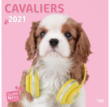 Browntrout Cavalier King Charles Spaniel Calendar 2021 Myrna