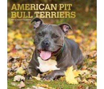 Browntrout American Pit Bull Terrier-Kalender 2021