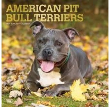 Browntrout American Pit Bull Terrier Calendar 2021