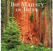 Browntrout The Majesty of Trees Kalender 2021