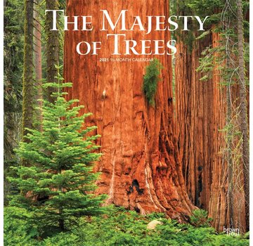 Browntrout The Majesty of Trees Calendar 2021