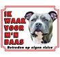 American Staffordshire Terrier Wake board - Je regarde mon patron