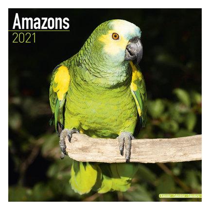 Macaws Calendar