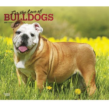 Browntrout Bulldog Kalender 2021 Deluxe