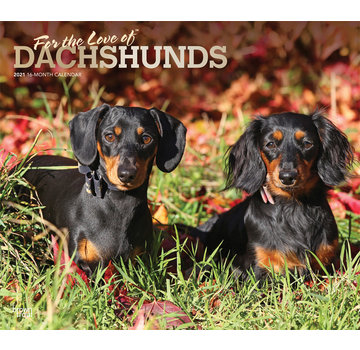 Browntrout Dachshund Calendar 2021 Deluxe