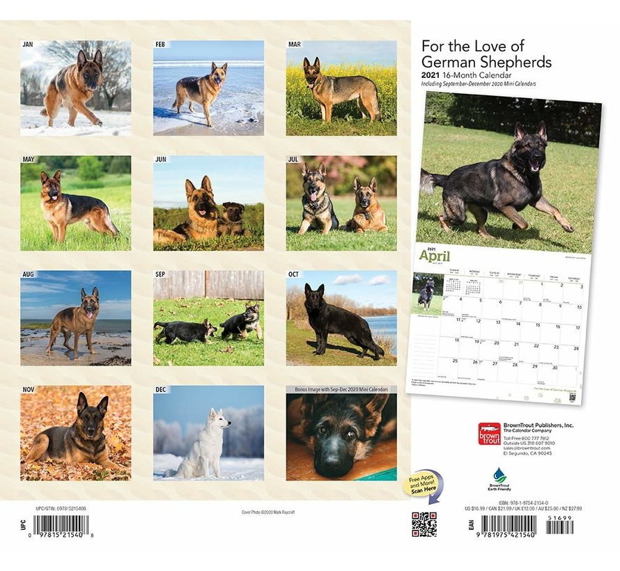 Berger allemand Deluxe Calendrier 2021