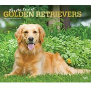 Browntrout Golden Retriever Calendrier 2021 Deluxe
