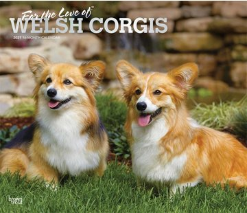 Browntrout Welsh Corgi Calendrier 2021 Deluxe