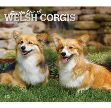 Browntrout Welsh Corgi Calendar 2021 Deluxe