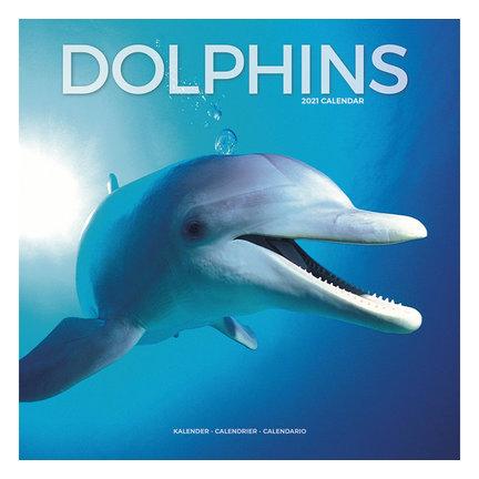 Dolfijn Kalender