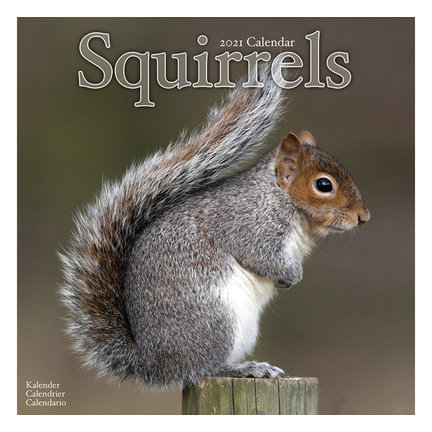 Squirrel Calendar
