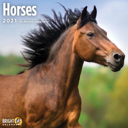 Calendrier cheval
