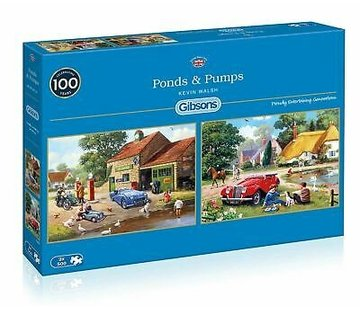 Gibsons Ponds & Pumps 2x 500 Pieces