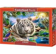 Castorland Twilight Puzzle 1500 Pieces