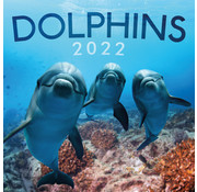 ML Publishing Dolphins Calendar 2022