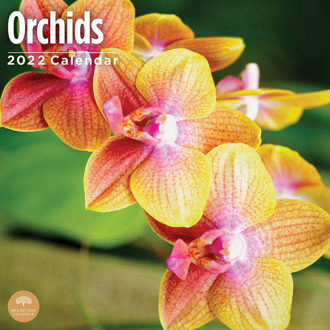 BrightDay Orchids Kalender 2022