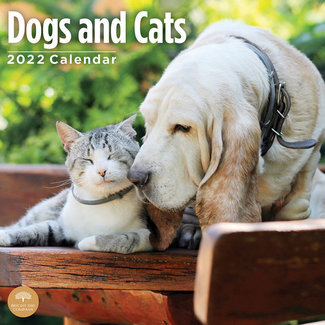 BrightDay Dogs and Cats Calendar 2022