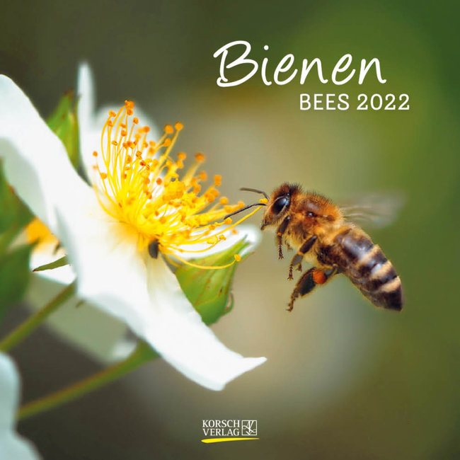 Korsch Verlag Bijen Kalender 2022
