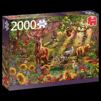 Jumbo Magic Forest at Sunset Puzzel 2000 Stukjes