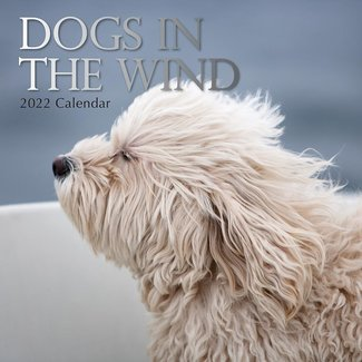 The Gifted Stationary Dogs in the Wind 2022 Calendar