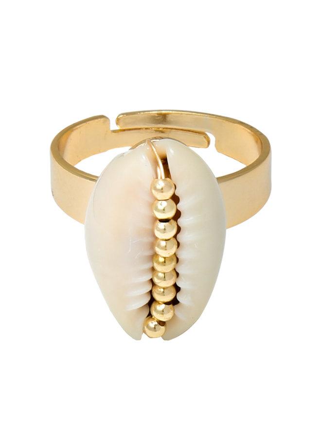 Ring Shell Beauty
