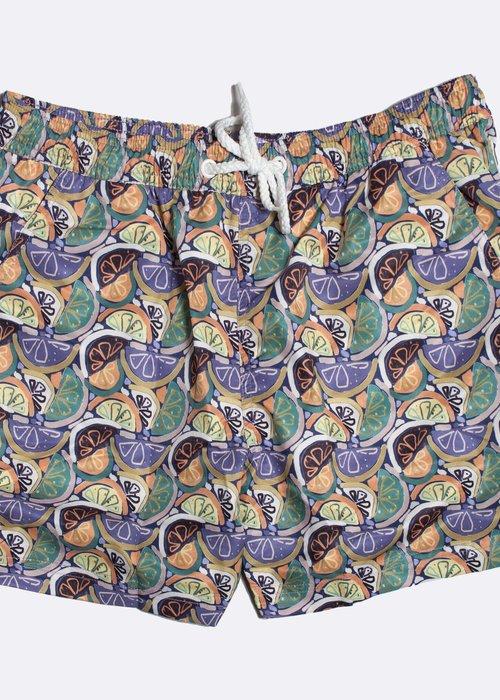 Far Afield Swim Shorts