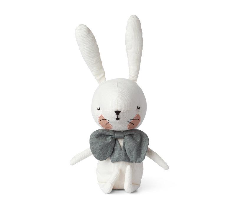 Wit konijntje in gift box