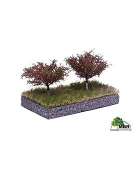 MBR model kersen bomen 51-2316