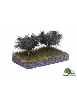 MBR model pruimen bomen 51-2317