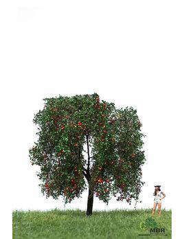 MBR model appelboom 51-2404