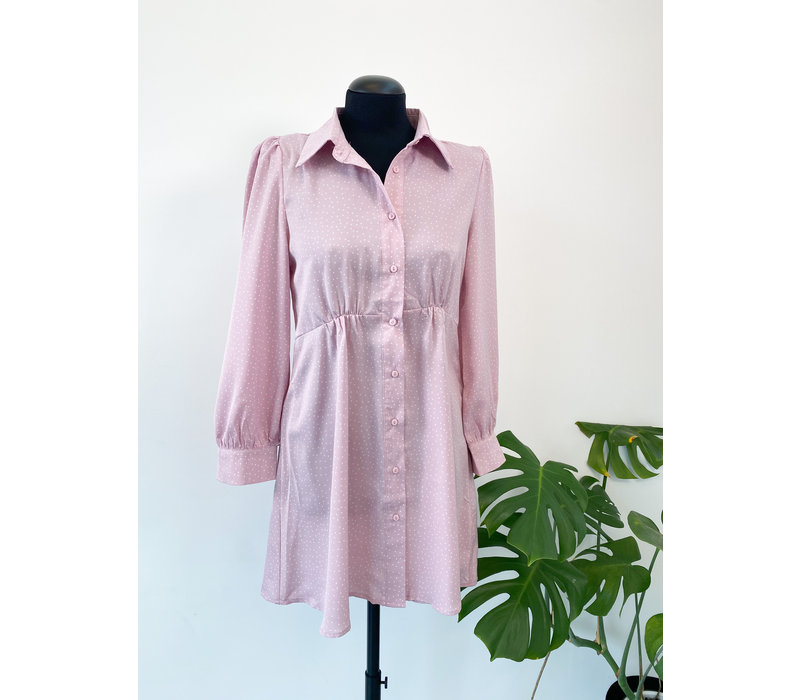 STELLA PINK DOTS DRESS