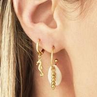 PEARL SHELL EARRINGS GOLD