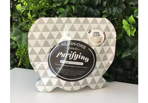 Lindsay Purifying Charcoal Modeling Mask Pouch