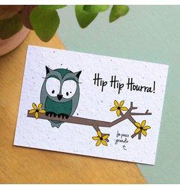 Bloom Bloom Card Flowers Owl Hip Hip Hooray