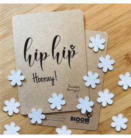 Bloom Bloom Card Flowers Confetti Hip Hip Hooray