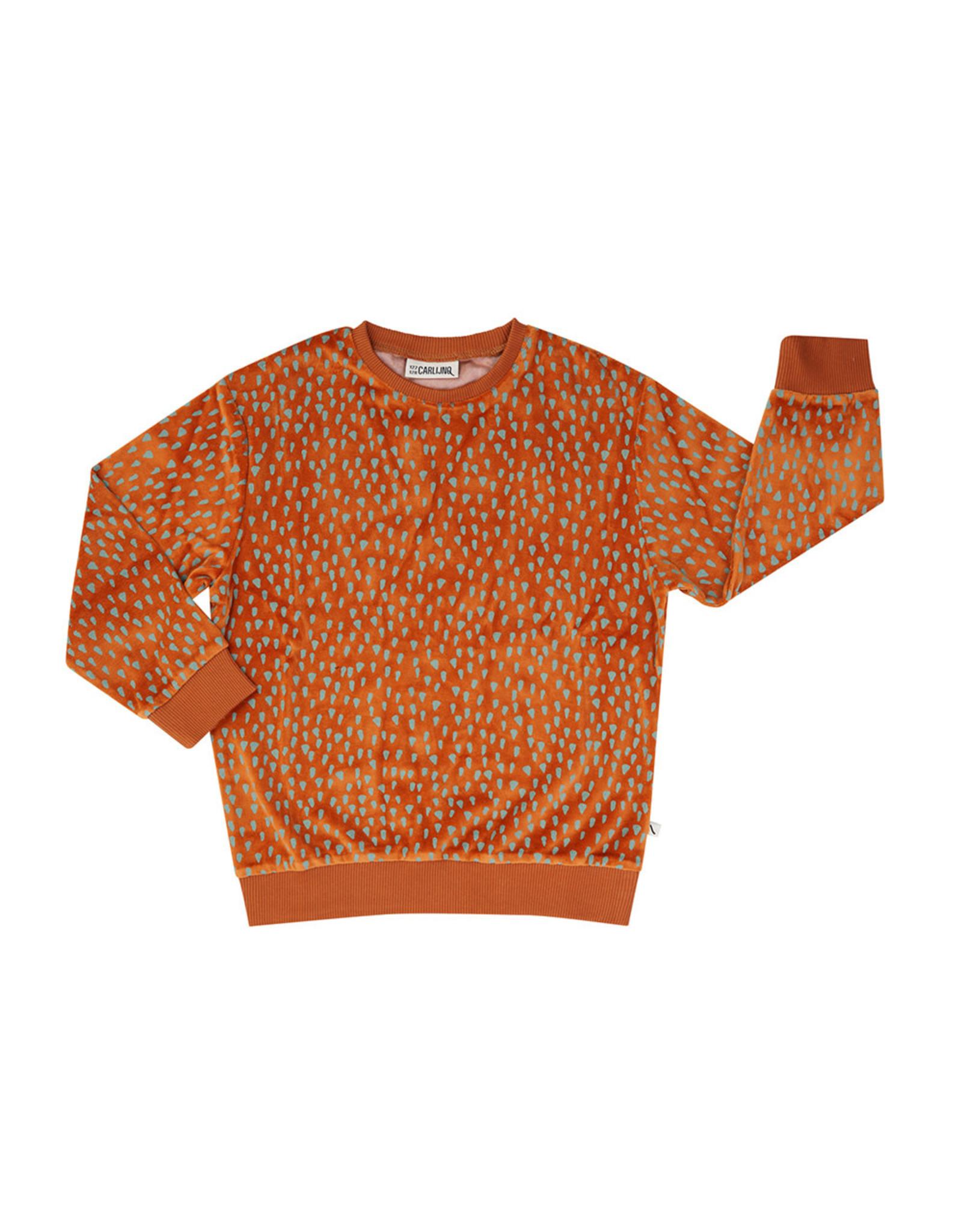 Carlijn Q Carlijn Q Mountain Air Sparkles - Velours Sweater