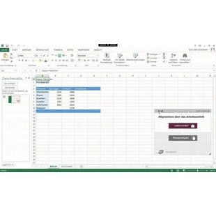 Elearning Excel 2013 Kurs Online Anfänger