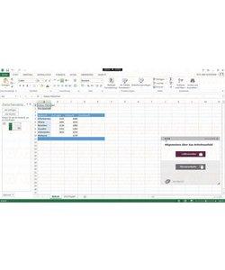 Elearning Excel 2010 Kurs Online Anfänger