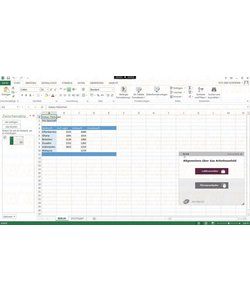 Excel 2016 Anfänger E-learning Kurs Online