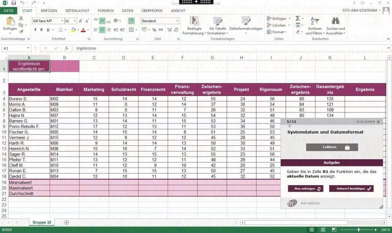 E-Learning Microsoft Office 2010 Totalpaket Kurs Fortgeschrittene und Profi