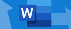 Word oder Word für das Web
