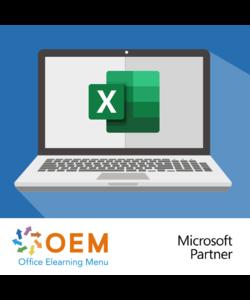 Excel 2019 Fortgeschrittener E-learning