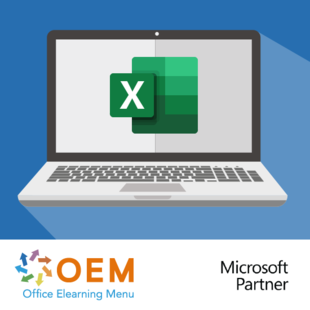 Microsoft Office 365 Excel Basis