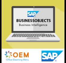 SAP Business Objects Business Intelligence E-Learning Kurs