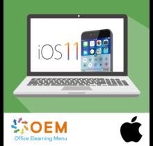 Fundamentals of iOS 11 E-Learning Kurs
