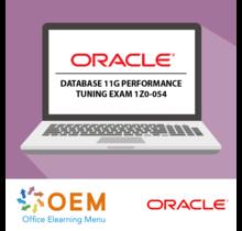 Oracle Database 11g Performance tuning exam 1Z0-054 E-Learning Kurs