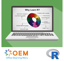Introduction to R Programming E-Learning Kurs