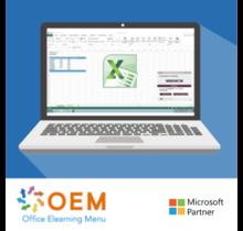 E-Learning Excel 2010 Kurs Anfänger und Fortgeschrittene