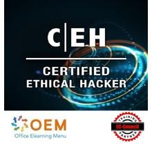 Certified Ethical Hacker V11 + Examen + Gift Kurs