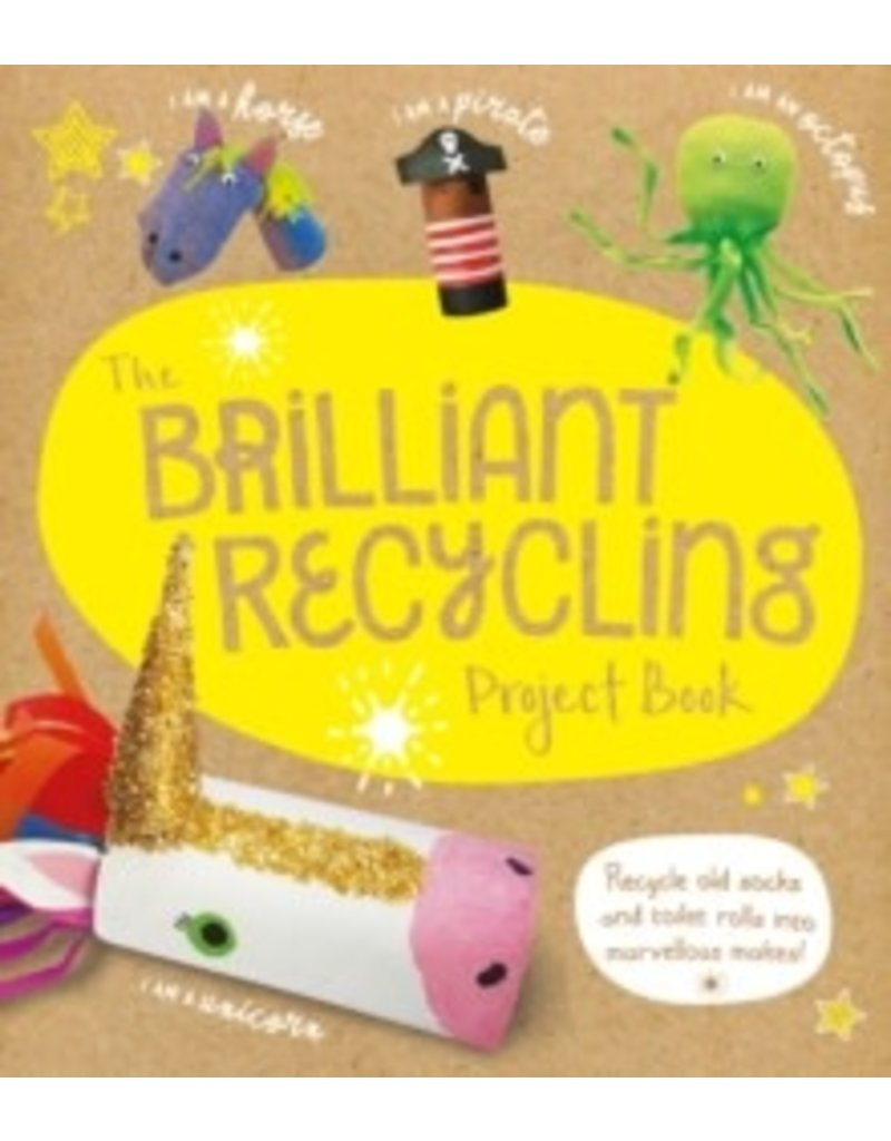 Brilliant Recycling Project